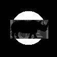 rhino-icon1